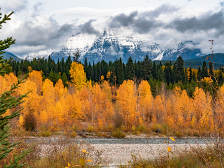 Fall in Love with Kalispell, Montana