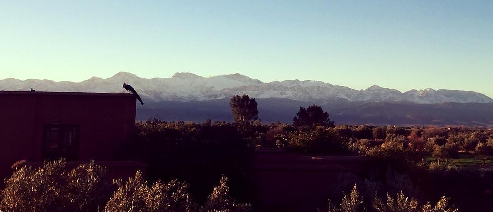 Vue de la terrasse sur le Moyen Atlas
