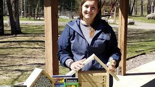#LongLakeLearning Be a steward to pollinators, make a Bee House