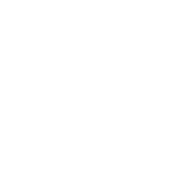 friends and stewards logo 2.png