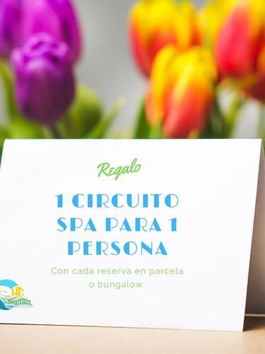 Oferta en setmana santa a peñiscola