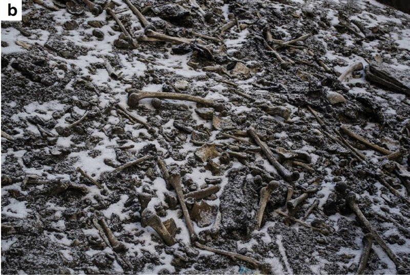 Roopkund el lago de los esqueletos, foto de los esqueletos