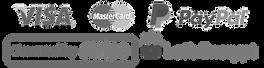 Logos-seguridad-pagos-paypal-stripe-lets