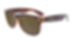 affordable-sunglasses-glossy-brown-torto