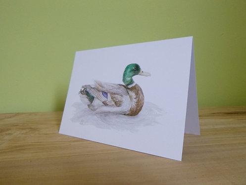 'The Magnificent Mallard' Greeting card