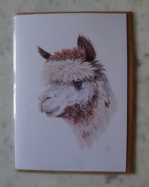 'Crumble' Alpaca Greeting Card