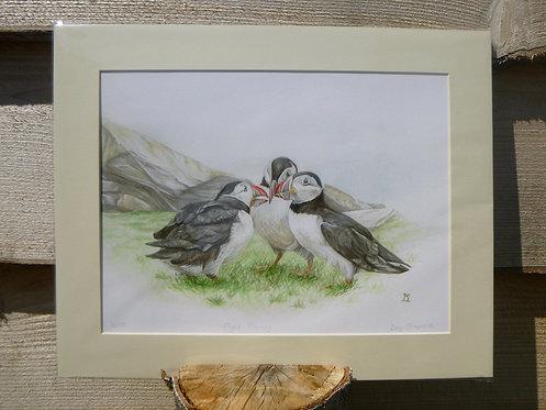 'Flight Planning' Puffin Fine Art Giclee Print