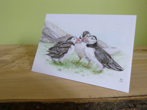 'Flight Planning' Puffin Greeting Card