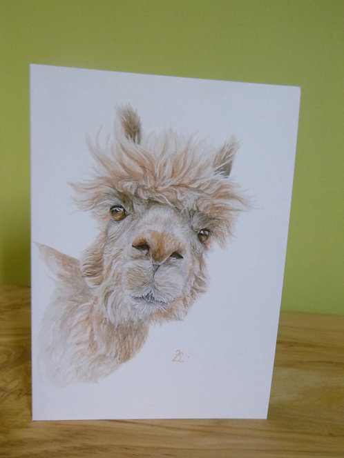 'Did Somebody Say Cake?' Alpaca Greeting Card