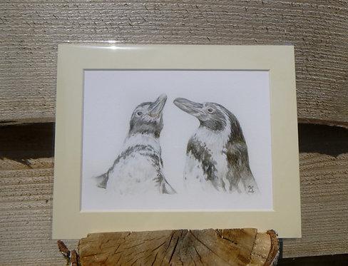 'Jackie & Peaches' Humboldt Penguin Fine Art Print