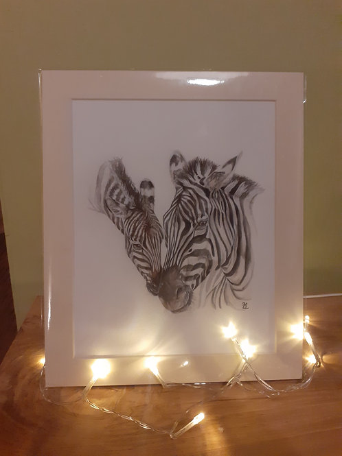 'Loving touch' Zebra Fine Art Giclee Print