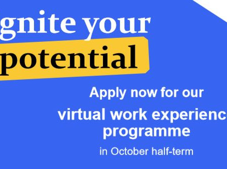 Virtual WEX with Capita, Euromoney or MeeTwo (15-16+ yrs, Oct Half Term, deadline: Sun 27th Sept)