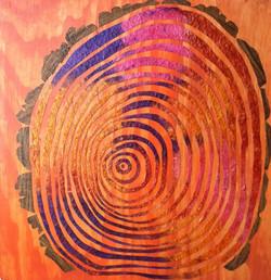 tree rings nf