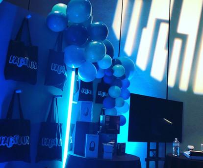 Mobcam event lightingDisplay.jpg