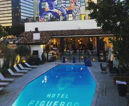 Hotel Fig pool gobo.jpg