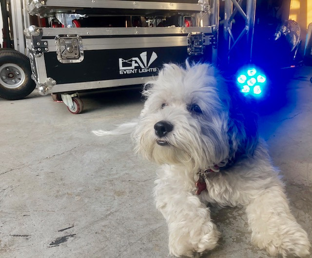 L.A. Event Lights & Design