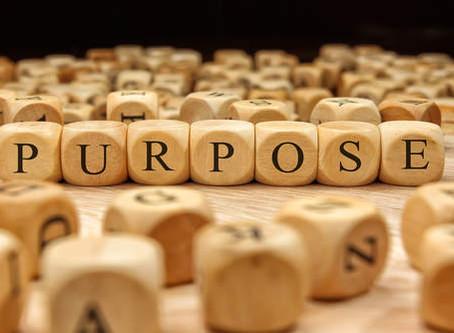 A Search for Purpose…