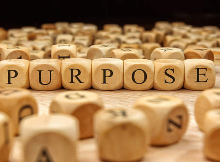 A Search for Purpose…