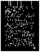 NoNoNo (Illuminated Manuscript)
