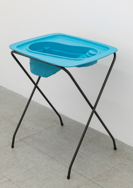 Lap Pool (Teal)