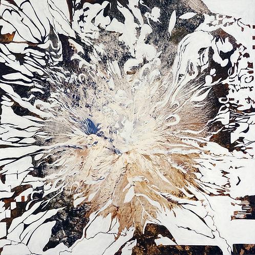 "Marisa Baumgartner - ""Standing in the Eye"" exhibition catalog"