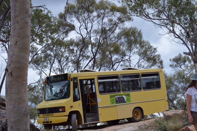 The yellow bus