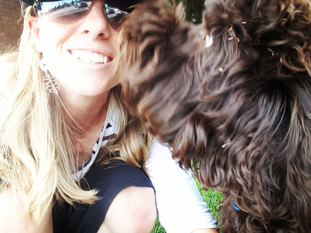 Why Does My Dog Lick My Face?