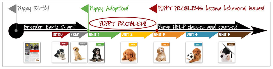 PUPPY PROBLEM InfoGraphic Timeline with