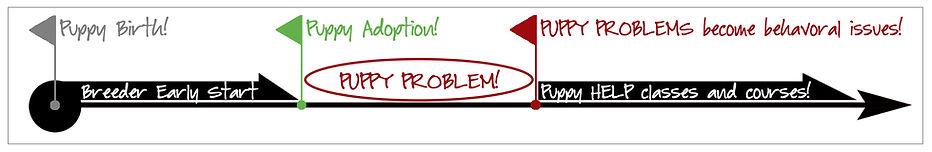 PUPPY PROBLEM InfoGraphic Timeline.jpg