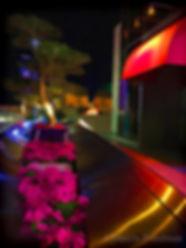 Glow of Night-3x4 72 ©**.jpg