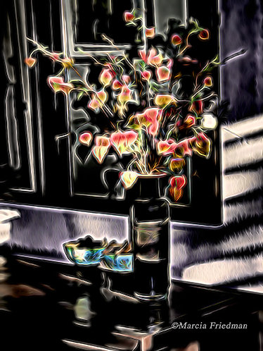 Flowers in the Shadowed Light