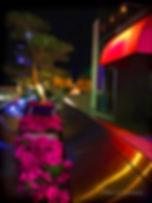 Glow of Night-USE_5x3.75 ©-a_.jpg
