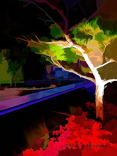 Tree in the Dark of Night