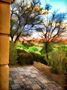 Terrace View & Tinted Trees