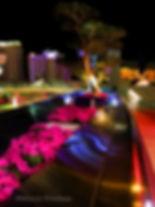 Night in the City 5x3.5©_.jpg