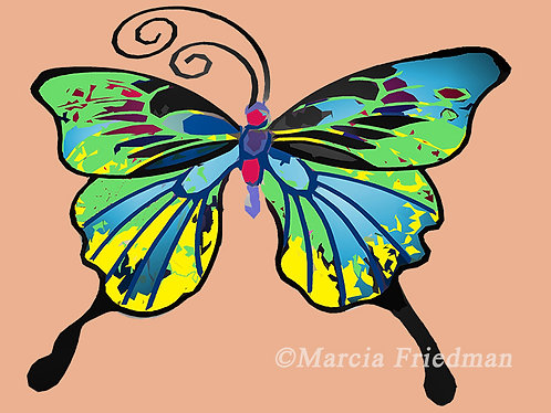 Butterfly in Many Hues