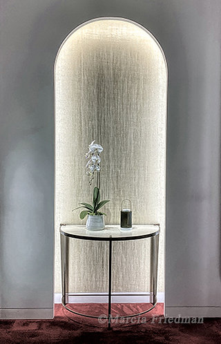 Orchid in the Light