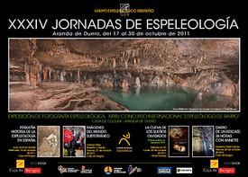 cartel 2011.jpg