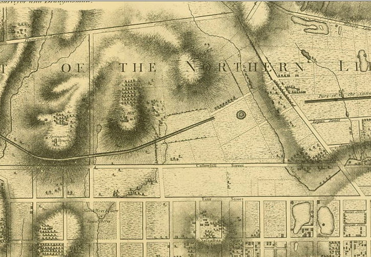 1796 Hills map crop.jpeg