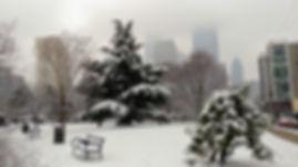 Park in snow 3.1.2019.jpg