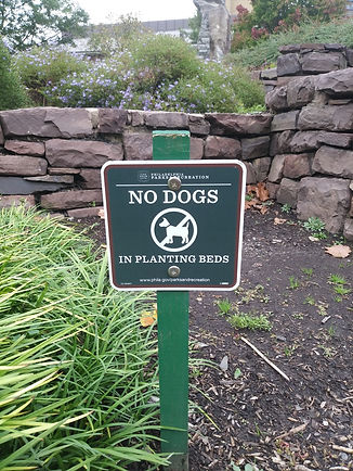 dog sign.jpg