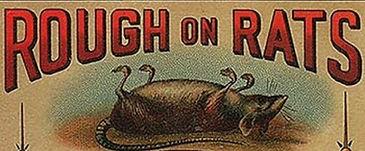 carey rough on rats crop2.jpeg