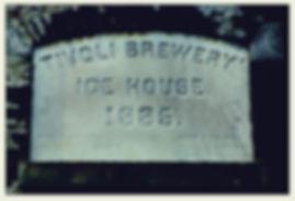 tivoli brewery 1885.jpeg