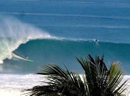 Mother's Day Swell.  Lives Lost, Lives Saved and the Man Who Follows No One.  The Wedge.