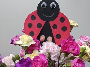 Ladybug Finger Puppet