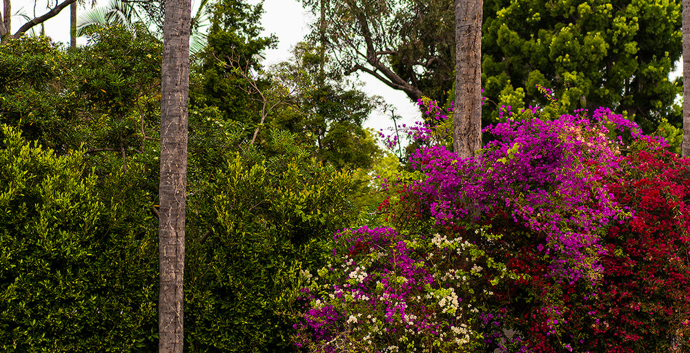 Hoffman Ospina Landscape Architecture Villa Style