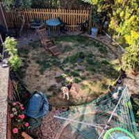 Artificial Lawn 1a.jpg