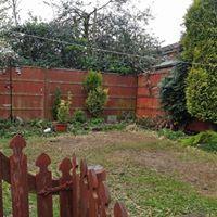 Artificial Lawn 3.jpg