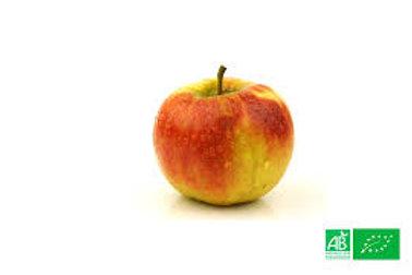 pomme Elstar  bio 500 gr