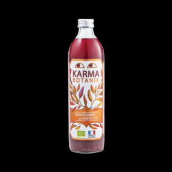 jus botanik gingembre hibiscus 500 ml
